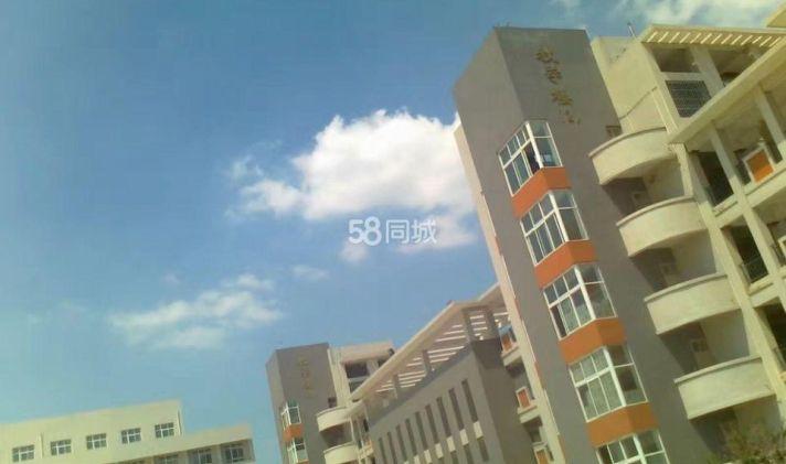 项城市 项城一高新校区家属楼 3室2厅1卫 100平米