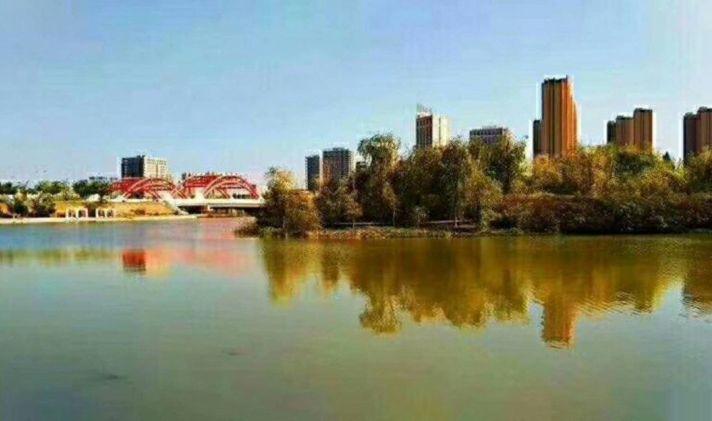 【新区绿地金融城二手房】115平米58万兰州智能智慧平屋全别墅绿地图片