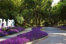 V7九间堂 叠拼别墅 送160平米花园 紧邻通燕高速 绿化好