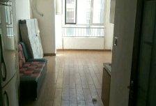 精装1室1厅1卫0阳台真漂亮,错层设计真时尚